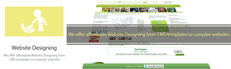 Website Design Services South Africa